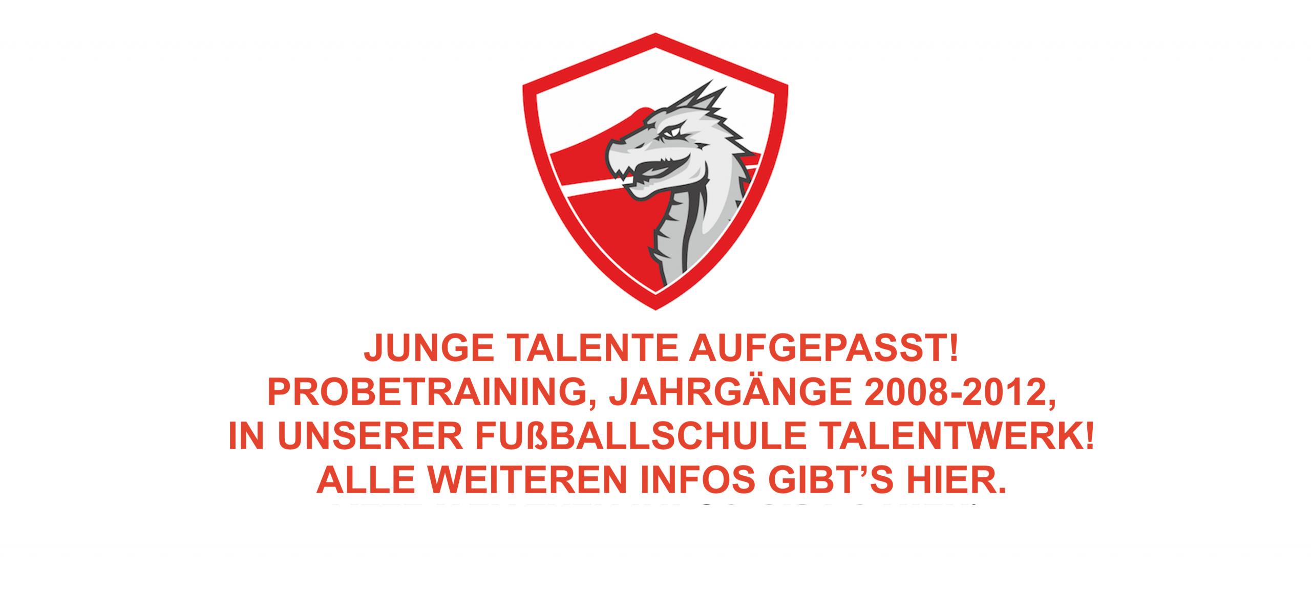 Link zum Talentwerk, Jahrgänge 2008-2011